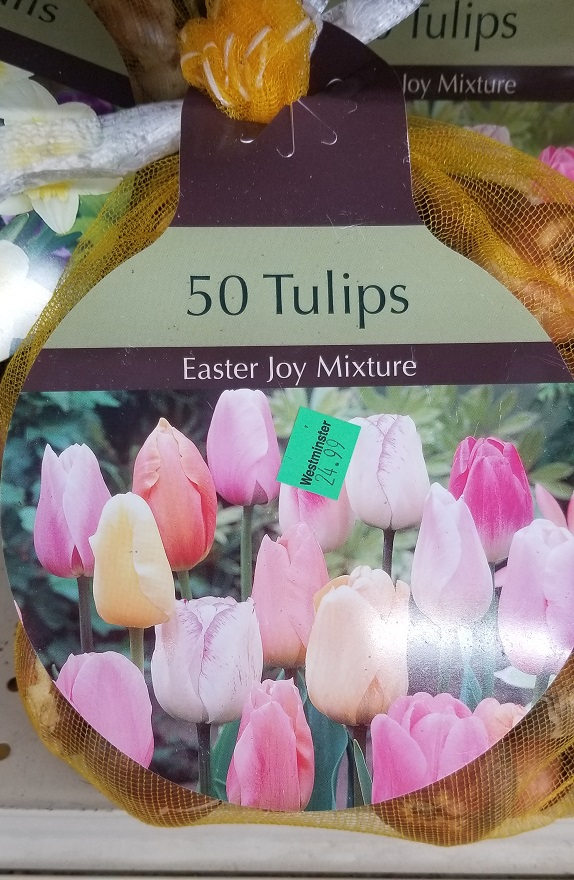 Easter Joy Mixture
